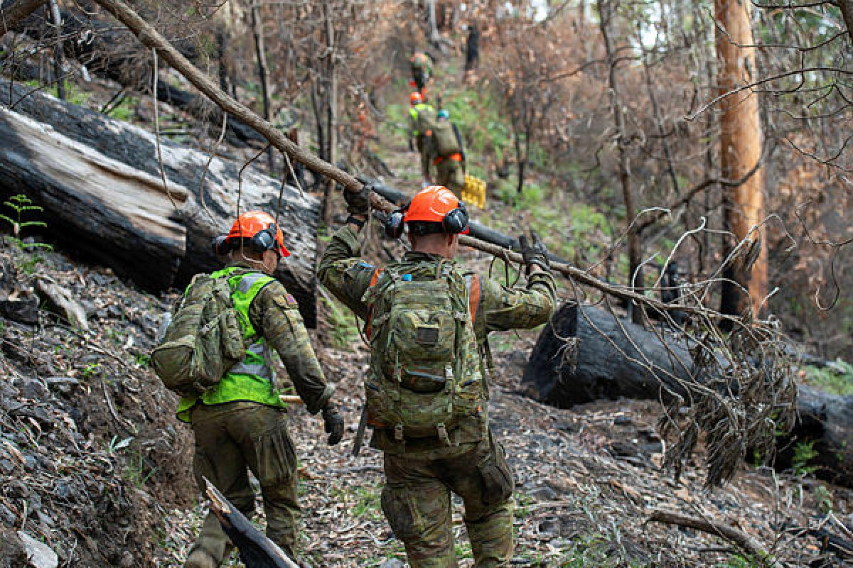 Sappers from the 2nd Combat Engineer Regiment made the final push to clear the Riley's Ride horse trail on Operation Bushfire Assist. Photo: Trooper Jonathan Goedhart