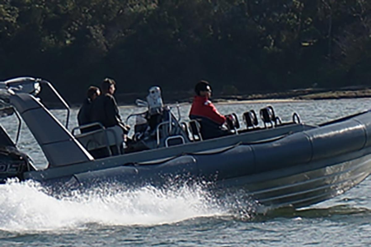 A Sydney company was awarded the contract to build 12 new Gemini seaboats.