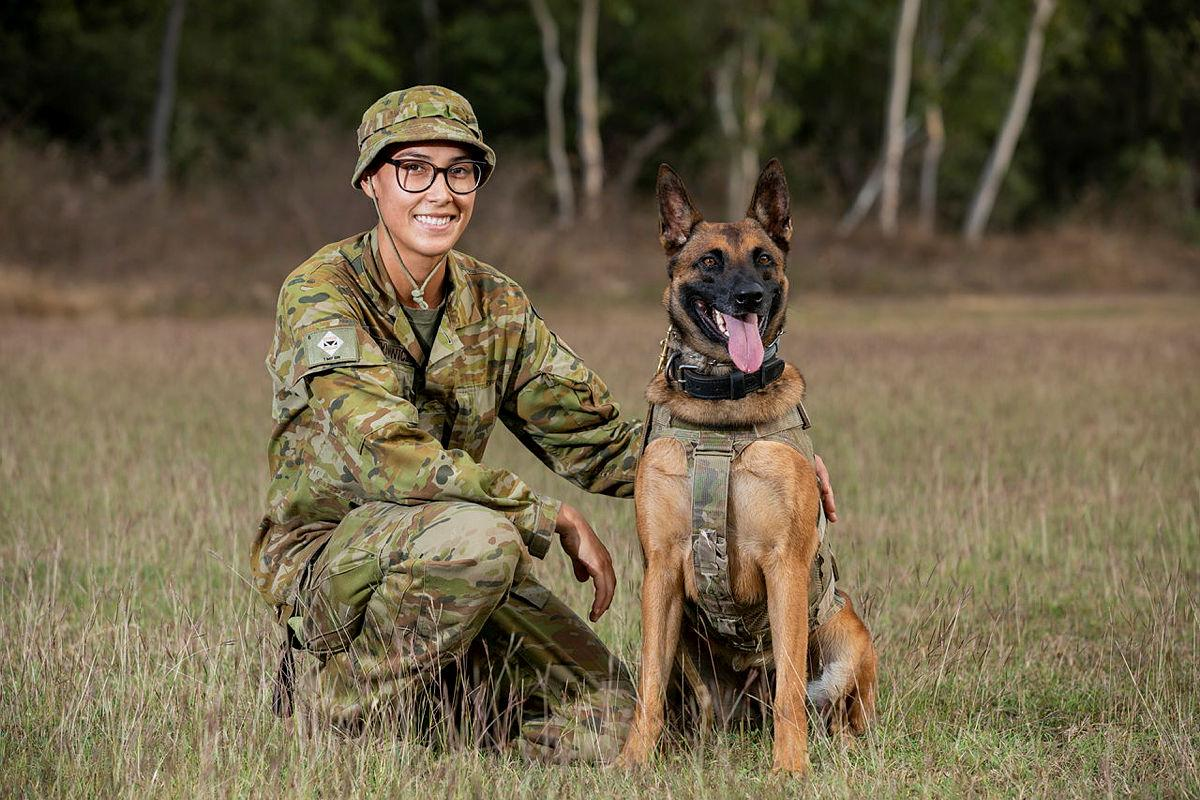 Private Beata Wawrzynowicz and Military Police Dog Azura, of the 1st Military Police Battalion, at Lavarack Barracks, Townsville, for Exercise Talisman Sabre. Photo: Leading Aircraftwoman Emma Schwenke