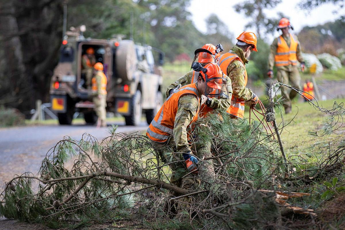 Army personnel from the 22nd Engineer Regiment and the 4th/19th Prince of Wales's Light Horse Regiment clear a fallen tree branch in Carrajung, Victoria. Photo: Corporal David Cotton